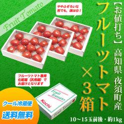 フルーツトマト・約1kg(10~15玉前後)×3箱セット・高知県 夜須町産【送料無料】