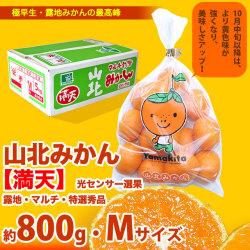 山北みかん・満天・800g袋・(10月中旬以降)