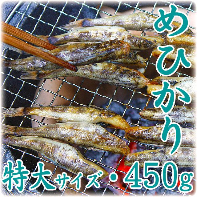 めひかり(目光)の干物・特大サイズ・450g