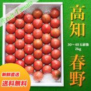 高知県・春野産フルーツトマト・生産者厳選・特選品・約2kg(30〜40玉前後入り) 【送料無料】