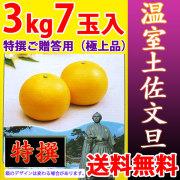 温室土佐文旦(ハウス栽培品)・特撰ご贈答用(極上品)・3kg・7玉入【送料無料】