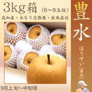 豊水 梨 (ほうすい なし)・秀品・3kg・6~9玉入り・徳久梨園の木なり完熟・豊水 【産地直送】