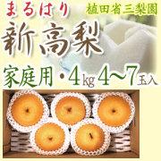 【送料無料】新高梨(にいたかなし)・高知県針木産・ご家庭用・4kg(4~7玉入り)【産地直送】