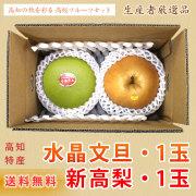 高知県産・新高梨1玉+水晶文旦1玉・詰め合わせ・フルーツセット