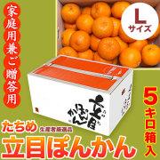 【送料無料】立目(たちめ)ぽんかん(高しょう系・岡山系)ご家庭用兼ご贈答用・5kg箱・Lサイズ