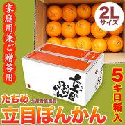 立目(たちめ)ぽんかん(高しょう系・岡山系)ご家庭用兼ご贈答用・5kg箱・2Lサイズ