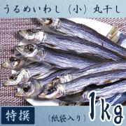 高知県産・「うるめいわし丸干し(小ウルメ)」・特撰上物・1kg【送料無料】