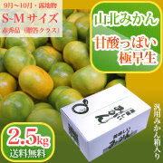 山北みかん・甘酸っぱい極早生・赤秀品・2.5kg箱(小分け品)・S~Mサイズ【送料無料】