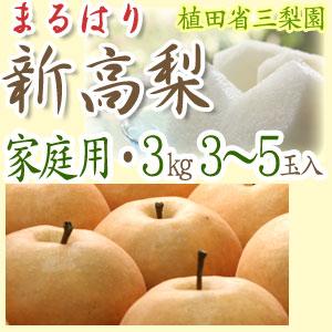 【送料無料】新高梨(にいたかなし)・高知県針木産・ご家庭用・3kg(3〜5玉入り)【産地直送】