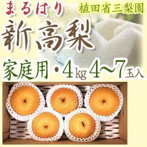 【送料無料】新高梨(にいたかなし)・高知県針木産・ご家庭用・4kg(4〜7玉入り)【産地直送】