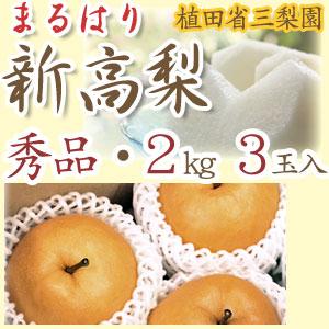 【産地直送】針木産の新高梨(にいたかなし)・高知市針木梨組合(まるはり)・秀品(ご贈答用)・約2kg・3玉入【送料無料】