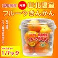 金柑(キンカン)・高知県産・完熟・山北温室きんかん(ハウス栽培品)約230g×1パック
