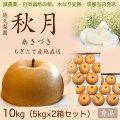【木なり完熟・もぎたて】秋月(あきづき)梨(なし)・秀品・10kg(5kg×2箱セット)・厳選農家の産地直送