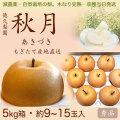 【木なり完熟・もぎたて】秋月(あきづき)梨(なし)・秀品・5kg・約9~15玉入り・厳選農家の産地直送