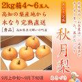 秋月梨(あきづきなし)秀品2kg・4〜5玉入り【産地直送】