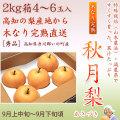 秋月梨(あきづきなし)秀品・2kg・4~6玉入り【産地直送】