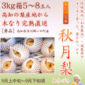 秋月梨(あきづきなし)秀品・3kg・5〜8玉入り【産地直送】