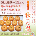 秋月梨(あきづきなし)秀品5kg・9〜15玉入り【産地直送】