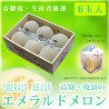 エメラルドメロン・特選・6玉入り(1玉用手提げ箱×6箱付き)