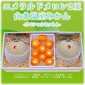 エメラルドメロン2玉と山北温室みかん・スペシャルセット・A