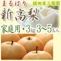 【送料無料】新高梨(にいたかなし)・高知県針木産・ご家庭用・3kg(3~5玉入り)【産地直送】
