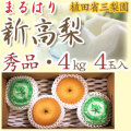 【産地直送】針木産の新高梨(にいたかなし)・高知市針木梨組合(まるはり)・秀品(ご贈答用)・約4kg・4玉入【送料無料】