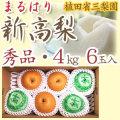 【産地直送】針木産の新高梨(にいたかなし)・高知市針木梨組合(まるはり)・秀品(ご贈答用)・約4kg・6玉入【送料無料】