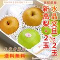 【送料無料】高知県産・新高梨2玉+水晶文旦2玉・大玉詰め合わせ(ムッキーちゃん1個付き)