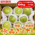 水晶文旦(高知県産)・特価 ご家庭用・約4kg・(中玉以上・5~8玉)【送料無料】