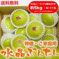 水晶文旦(高知県産)・特価ご家庭用・約5kg・(中玉以上・6〜11玉)【送料無料】