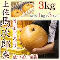 土佐馬次郎(うまじろう)梨・植田省三梨園・3kg(大玉1kg×3玉入)【産地直送】