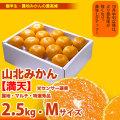 山北みかん・満天・約2.5kg(10月中旬以降)