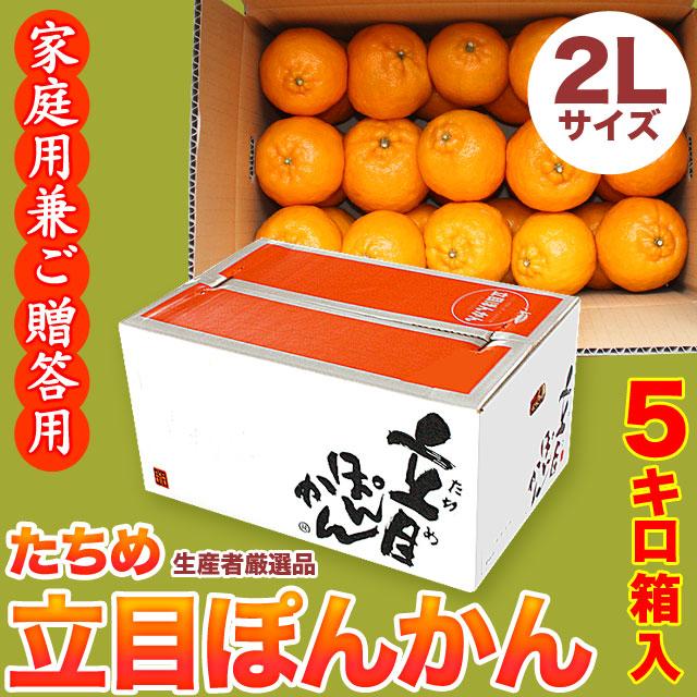 立目(たちめ)ぽんかん(高しょう系)ご家庭用兼ご贈答用・5kg箱・2Lサイズ