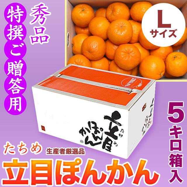 【送料無料】立目(たちめ)ぽんかん(高しょう系・岡山系)秀品・特撰ご贈答用・5kg箱・Lサイズ