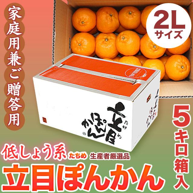 立目(たちめ)ぽんかん(低しょう系)ご家庭用兼ご贈答用・5kg箱・2Lサイズ