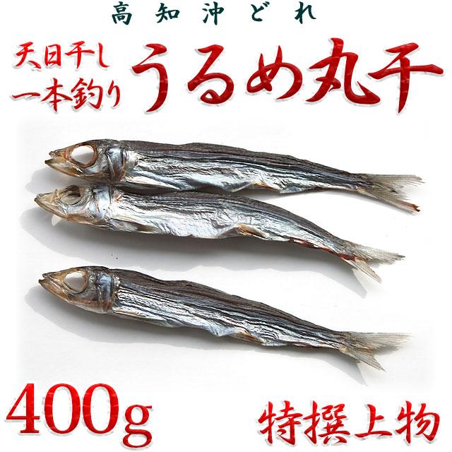 高知県産・「天日干し・一本釣りうるめいわし丸干し」・特撰上物・400g【送料無料】