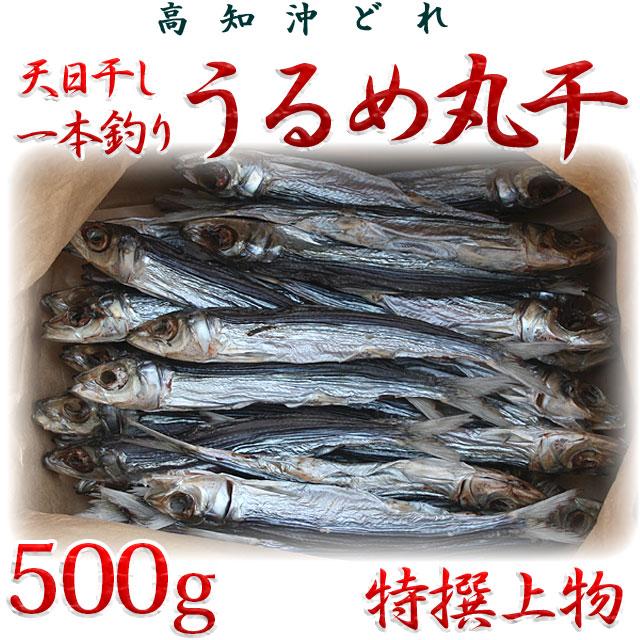 高知県産・「天日干し・一本釣りうるめいわし丸干し」・特撰上物・500g【送料無料】