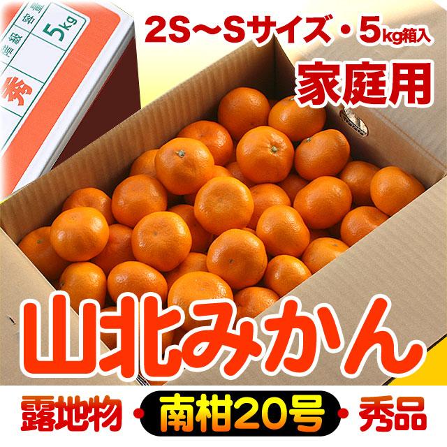 山北みかん・露地もの・南柑20号・秀品(ご家庭用)・5kg箱・2S~Sサイズ【送料無料】
