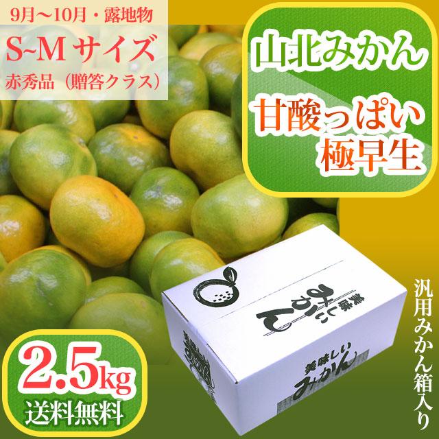 山北みかん・甘酸っぱい極早生・赤秀品・2.5kg箱(小分け品)・S~Mサイズ