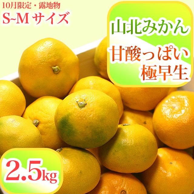 山北みかん・甘酸っぱい極早生・秀品・2.5kg箱・S〜Mサイズ【送料無料】