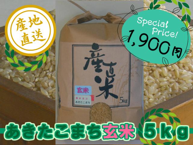 農家直送こだわりのあきたこまち 玄米5kg (令和1年産・新米)