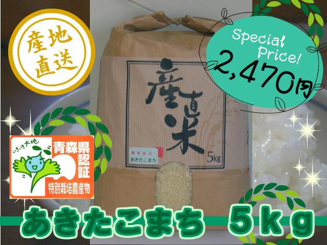 akiseiSP-5new.jpg