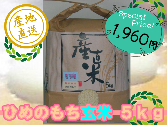 ひめのもち 玄米5kg (令和3年産・新米)