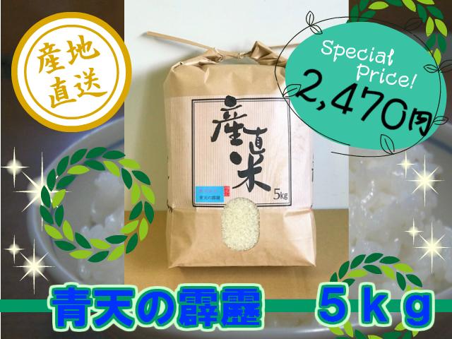 青天の霹靂 精米5kg (令和3年産・新米)