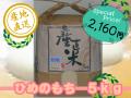ひめのもち 精米5kg (平成29年産)