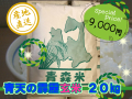 青天の霹靂 玄米20kg (令和2年産)