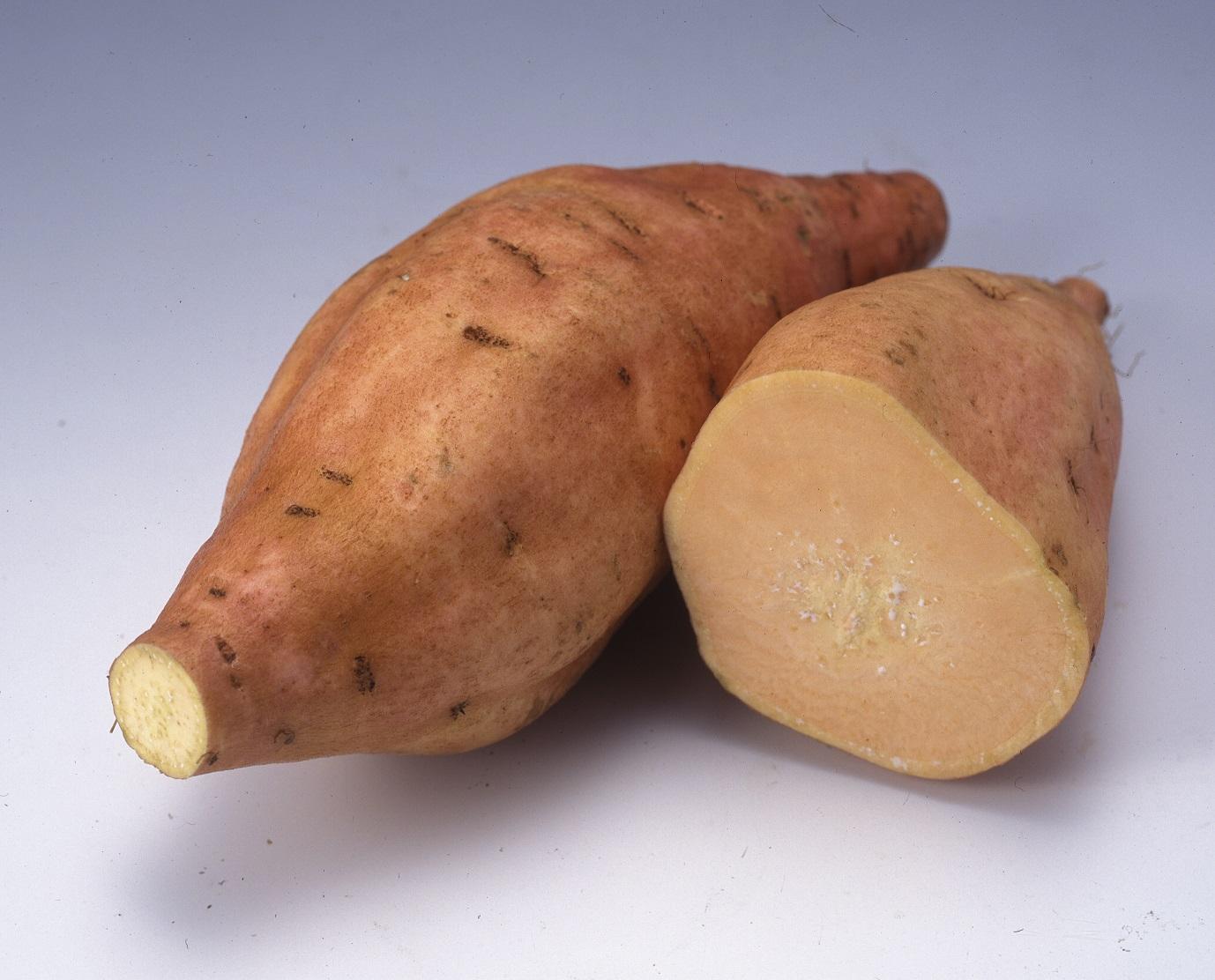 鹿児島県産 ハヤトイモ(1kg)