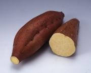 鹿児島県種子島産 安納紅 (1kg)