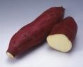 【早掘り】鹿児島県産 紅さつま(1kg)【新いも】