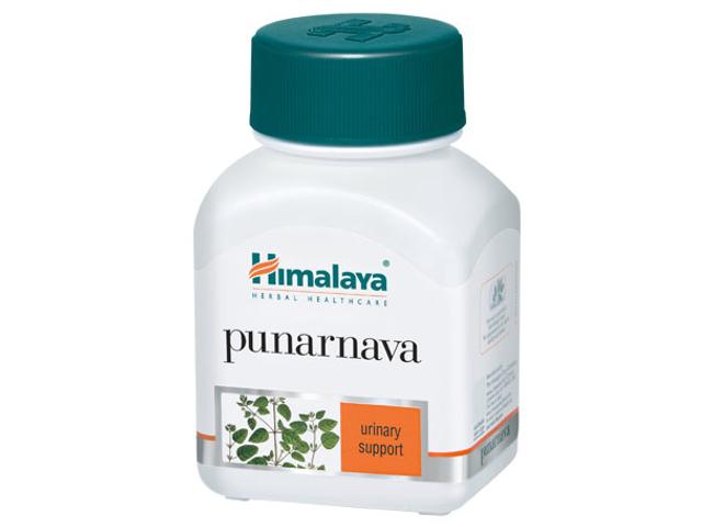 ヒマラヤ プラルナヴァ (ナハカノコソウ, プナルナバ) サプリメント,Punarnava plant, Spreading Hogweed, Boerhavia diffusa
